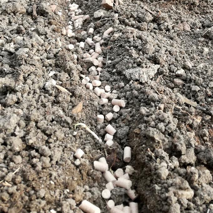 Engrais naturel fertilisation potager