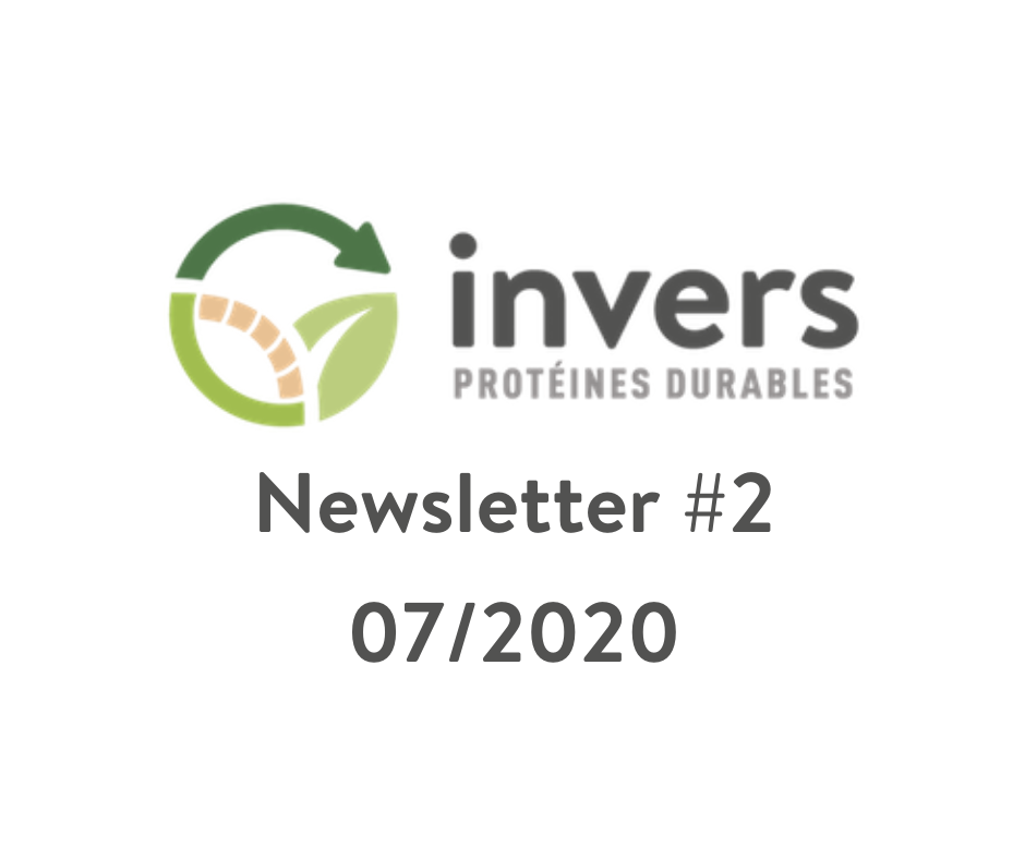 Newsletter Invers #2 – 07/2020