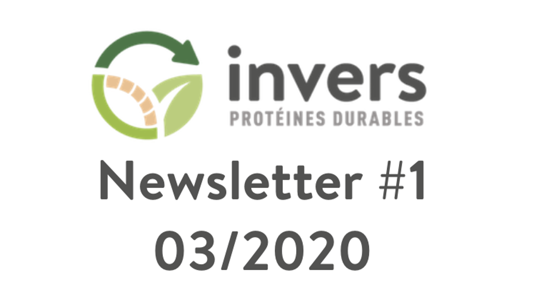 Newsletter Invers #1 – 03/2020