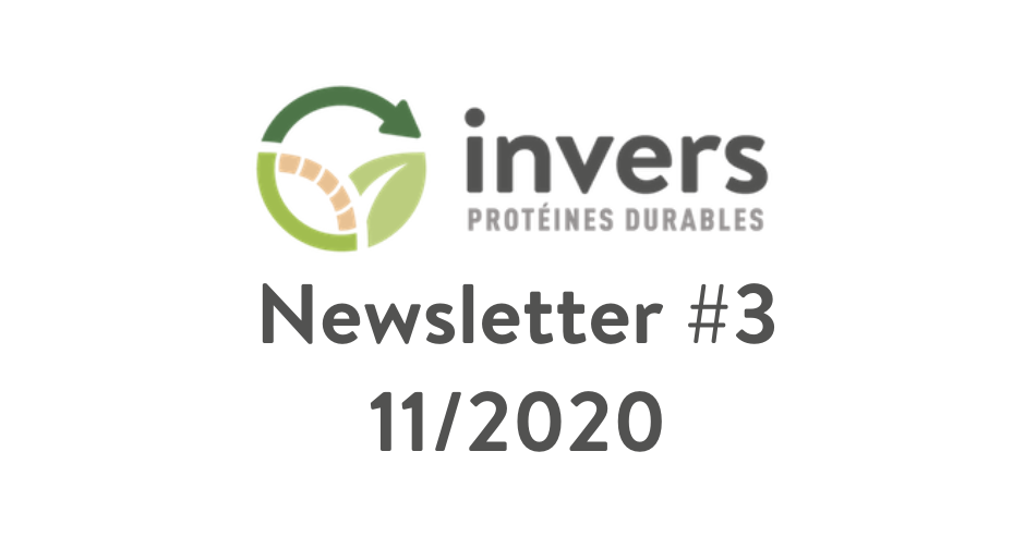 Newsletter Invers #3 – 11/2020
