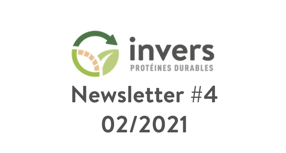 Newsletter Invers #4 – 02/2021