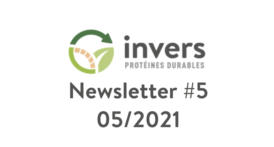 Newsletter Invers #5 – 05/2021